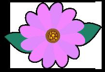 Bloem met roze blaadjes